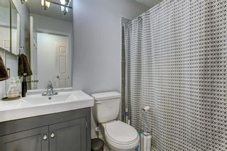 Photo 16: 4P 525 56 Avenue SW in Calgary: Windsor Park Apartment for sale : MLS®# A1123040