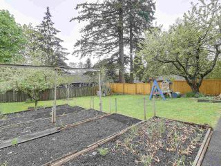 Photo 15: 1906 W KING EDWARD Avenue in Vancouver: Quilchena House for sale (Vancouver West)  : MLS®# R2162632