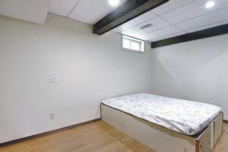 Photo 32: 23 Castlefall Way NE in Calgary: Castleridge Detached for sale : MLS®# A1141276