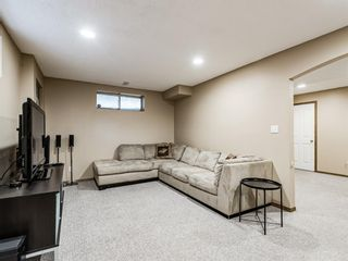 Photo 31: 25 Martha's Haven Manor NE in Calgary: Martindale Detached for sale : MLS®# A1101906
