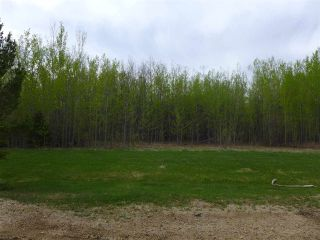 Photo 27: 50 Ave RR 281: Rural Wetaskiwin County Rural Land/Vacant Lot for sale : MLS®# E4191216