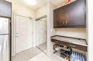 Photo 10: 413 507 ALBANY Way in Edmonton: Zone 27 Condo for sale : MLS®# E4264488