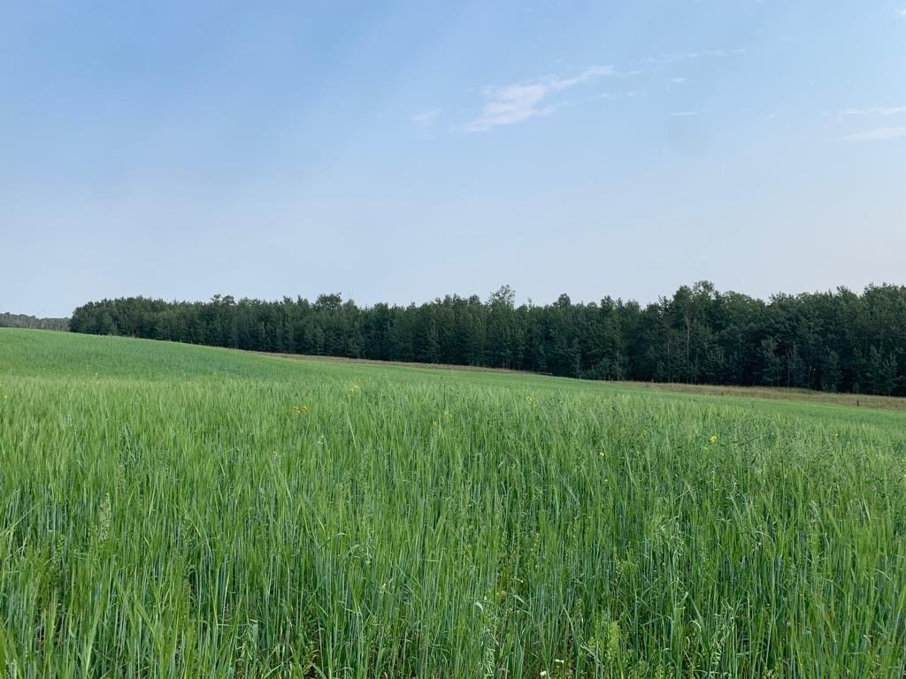 Main Photo: Hwy 616 RR 10: Rural Wetaskiwin County Rural Land/Vacant Lot for sale : MLS®# E4258071