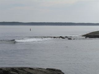 Photo 14: Pages Island in Port La Tour: 407-Shelburne County Vacant Land for sale (South Shore)  : MLS®# 202022571