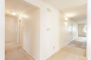 Photo 7: 14415 80 Avenue NW in Edmonton: Zone 10 House for sale : MLS®# E4264107
