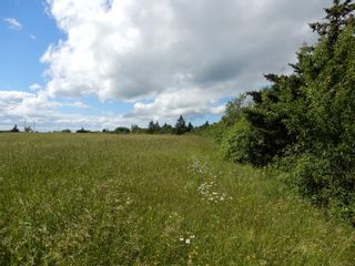 Photo 12: Lot 17 Second Division Road in Heathbell: 108-Rural Pictou County Vacant Land for sale (Northern Region)  : MLS®# 202116209