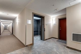Photo 27: 211 1321 KENSINGTON Close NW in Calgary: Hillhurst Apartment for sale : MLS®# A1092496