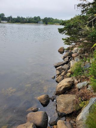Photo 8: 2422 Lawrencetown Road in Lawrencetown: 31-Lawrencetown, Lake Echo, Porters Lake Residential for sale (Halifax-Dartmouth)  : MLS®# 202119691