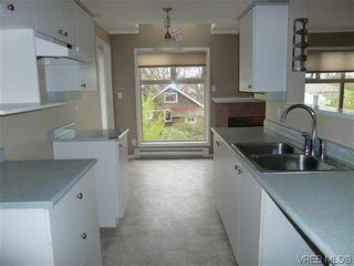 Photo 4: 406 2527 Quadra St in VICTORIA: Vi Hillside Condo for sale (Victoria)  : MLS®# 568823