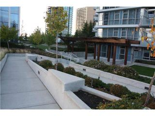 Photo 13: 1303 4400 BUCHANAN Street in Burnaby: Brentwood Park Condo for sale (Burnaby North)  : MLS®# V1088684