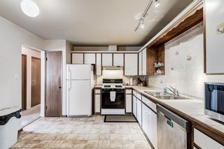 Photo 21: 5836 Silver Ridge Drive NW in Calgary: Silver Springs Detached for sale : MLS®# A1145171