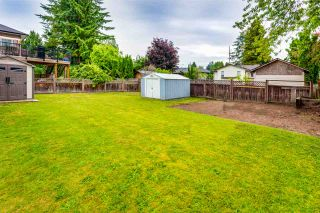 Photo 17: 11754 STEEVES STREET in Maple Ridge: Southwest Maple Ridge House for sale : MLS®# R2178109