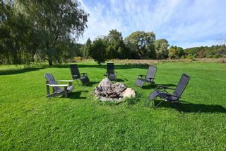 Photo 34: 7150 4th Concession Rd in New Tecumseth: Rural New Tecumseth Freehold for sale : MLS®# N5388663