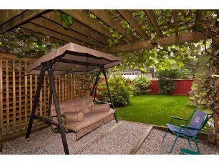 Photo 19: 23694 KANAKA Way in Maple Ridge: Cottonwood MR House for sale : MLS®# V901228