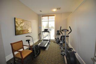 Photo 28: 408 6608 28 Avenue NW in Edmonton: Zone 29 Condo for sale : MLS®# E4229003