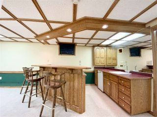 Photo 33: 471028 RGE RD 241: Rural Wetaskiwin County House for sale : MLS®# E4233950