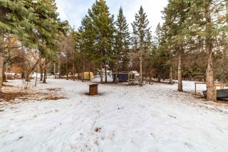 Photo 38: 12 Equestrian Place: Rural Sturgeon County House for sale : MLS®# E4229821