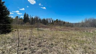Photo 4: Lot Crisp Road in South Williamston: 400-Annapolis County Vacant Land for sale (Annapolis Valley)  : MLS®# 202115469