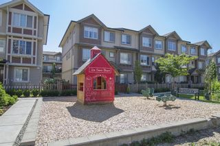 Photo 22: #61-10151 240th in Maple Ridge: Albion Townhouse for sale