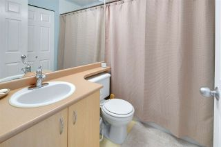 """Photo 13: 19 123 SEVENTH Street in New Westminster: Uptown NW Townhouse for sale in """"ROYAL CITY TERRACE"""" : MLS®# R2077015"""