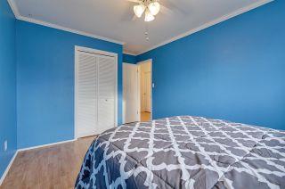 Photo 32: 3436 112 Street in Edmonton: Zone 16 House for sale : MLS®# E4242128