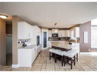 Photo 10: 34 CHAPALA Court SE in Calgary: Chaparral House for sale : MLS®# C4108128