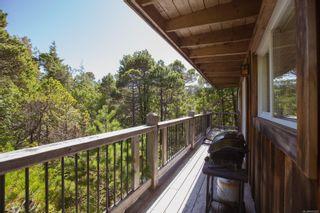 Photo 72: 1338 Pacific Rim Hwy in : PA Tofino House for sale (Port Alberni)  : MLS®# 872655