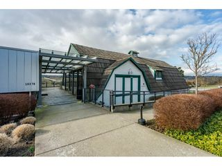 """Photo 32: 204 16380 64TH Avenue in Surrey: Cloverdale BC Condo for sale in """"The Ridge at Bose Farm"""" (Cloverdale)  : MLS®# R2535552"""