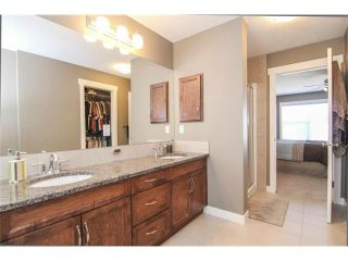 Photo 30: 659 COPPERPOND Circle SE in Calgary: Copperfield House for sale : MLS®# C4001282