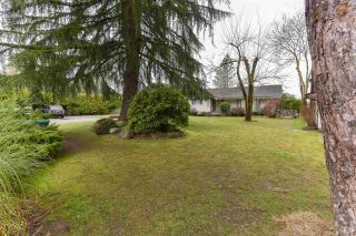 Photo 5: 13807 79 Avenue in Surrey: East Newton House for sale : MLS®# R2534559