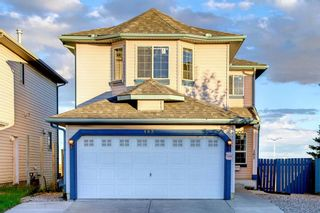 Main Photo: 183 Applestone Park SE in Calgary: Applewood Park Detached for sale : MLS®# A1148896