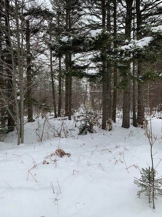 Photo 2: Parcel MAO-1 Long Point Road in Burlington: 404-Kings County Vacant Land for sale (Annapolis Valley)  : MLS®# 202100989