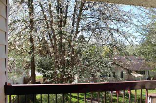 "Photo 2: 210 33490 COTTAGE Lane in Abbotsford: Central Abbotsford Condo for sale in ""Cottage Lane"" : MLS®# R2567798"