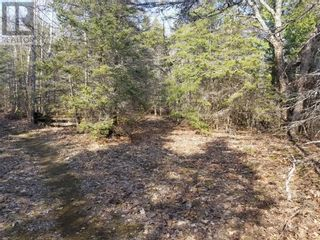 Photo 2: 250 Jules Lane in Mindemoya: Vacant Land for sale : MLS®# 2094891