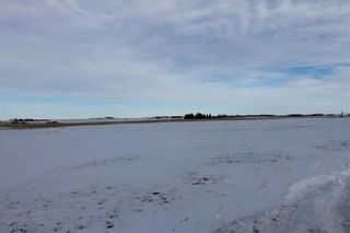 Photo 5: RGE RD 272 TWP RD 314: Rural Mountain View County Agriculture for sale : MLS®# C4220299