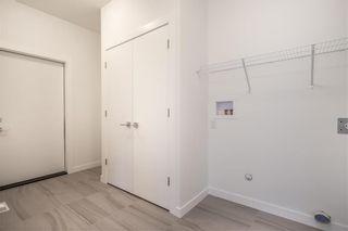 Photo 21: 173 Springwater Road in Winnipeg: Bridgwater Lakes Residential for sale (1R)  : MLS®# 202018909