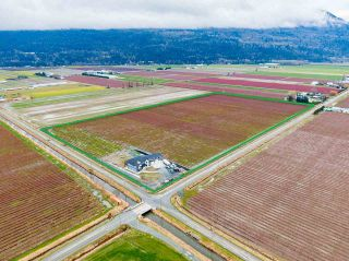 Photo 1: 40320 NO. 5 Road in Abbotsford: Sumas Prairie Agri-Business for sale : MLS®# C8036514