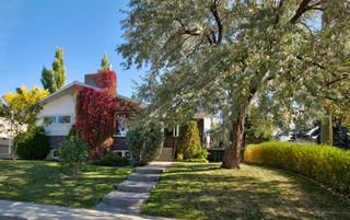 Photo 1: 3204 15 Street NW in Calgary: Collingwood Detached for sale : MLS®# A1149979