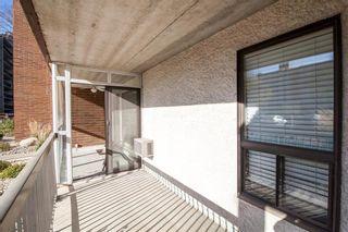 Photo 24: 104 9 Arden Avenue in Winnipeg: Pulberry Condominium for sale (2C)  : MLS®# 202124434
