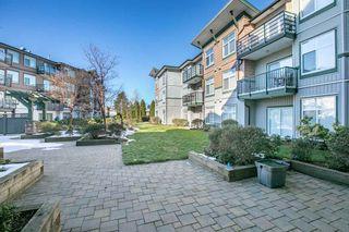 """Photo 13: 118 8183 121A Street in Surrey: Queen Mary Park Surrey Condo for sale in """"CELESTE"""" : MLS®# R2376190"""