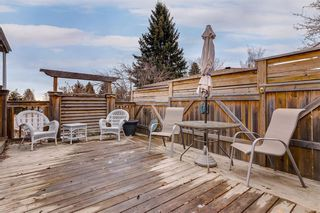 Photo 35: 21 HENDON Place NW in Calgary: Highwood Detached for sale : MLS®# C4276090