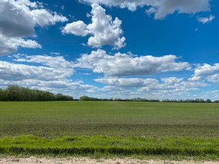 Photo 4: NE 34-49-27-W4 none: Rural Leduc County Rural Land/Vacant Lot for sale : MLS®# E4246771