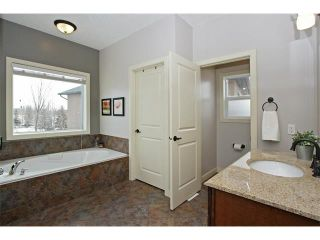 Photo 16: 36 Silvertip Gate: Rural Foothills M.D. House for sale : MLS®# C4102875