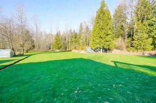 Photo 29: 25187 130 Avenue in Maple Ridge: Websters Corners House for sale : MLS®# R2538493
