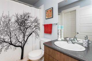 Photo 34: 306 10518 113 Street in Edmonton: Zone 08 Condo for sale : MLS®# E4261783