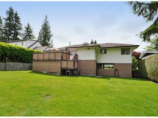 """Photo 20: 821 COTTONWOOD Avenue in Coquitlam: Coquitlam West House for sale in """"WEST COQUITLAM"""" : MLS®# V1067082"""