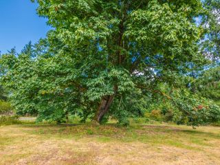 Photo 47: 3390 HENRY ROAD in CHEMAINUS: Du Chemainus House for sale (Duncan)  : MLS®# 822117