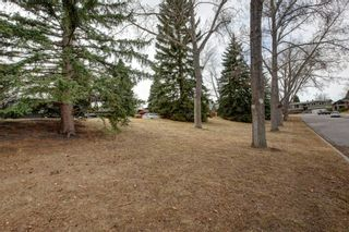 Photo 32: 107 Parkview Green SE in Calgary: Parkland Detached for sale : MLS®# A1092531