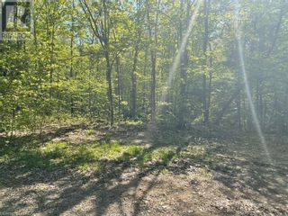 Photo 16: 1372 LAKE LORRAINE Road in Tory Hill: Vacant Land for sale : MLS®# 40052884