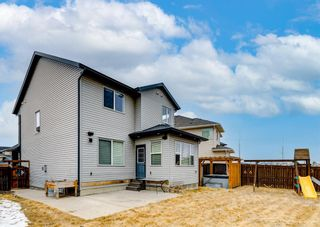 Photo 30: 151 Cranford Green SE in Calgary: Cranston Detached for sale : MLS®# A1088910